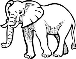 Drawing of an elephant leadership